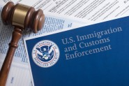 immigration-customs