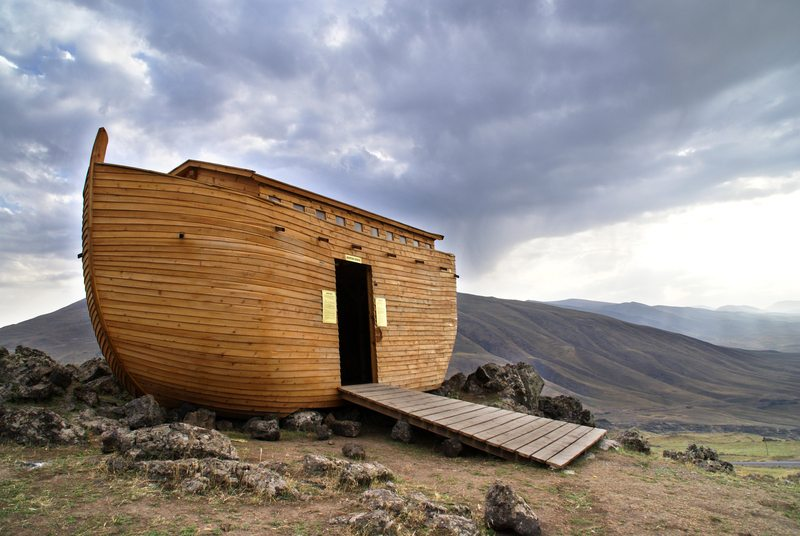 lessons from noah s ark   amac   the association of mature