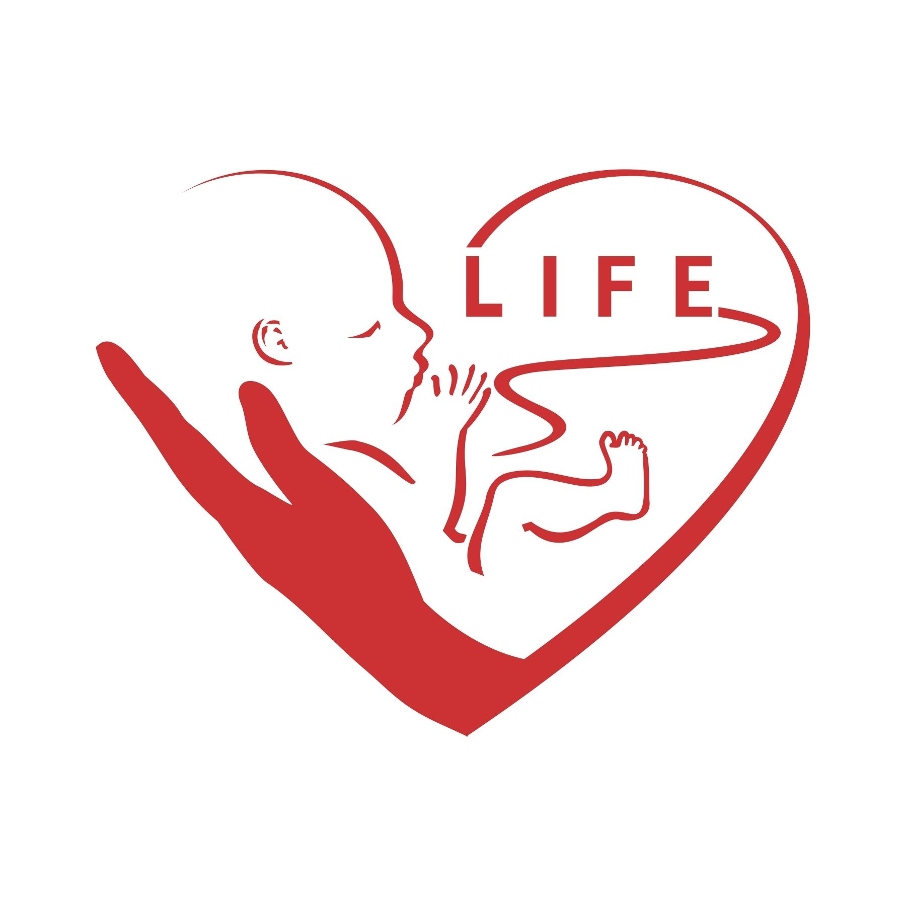pro life abortion is illegal A coalition of pro-life groups challenging the law say it explicitly targets and  coerces religious counseling centers into pro-abortion expression.