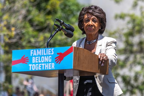 Mad Maxine Waters Democrats